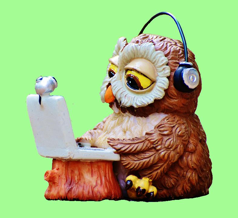 owl-2608783_960_720