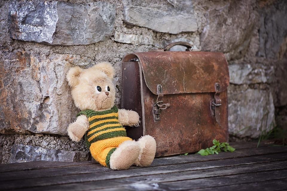 teddy-828506_960_720