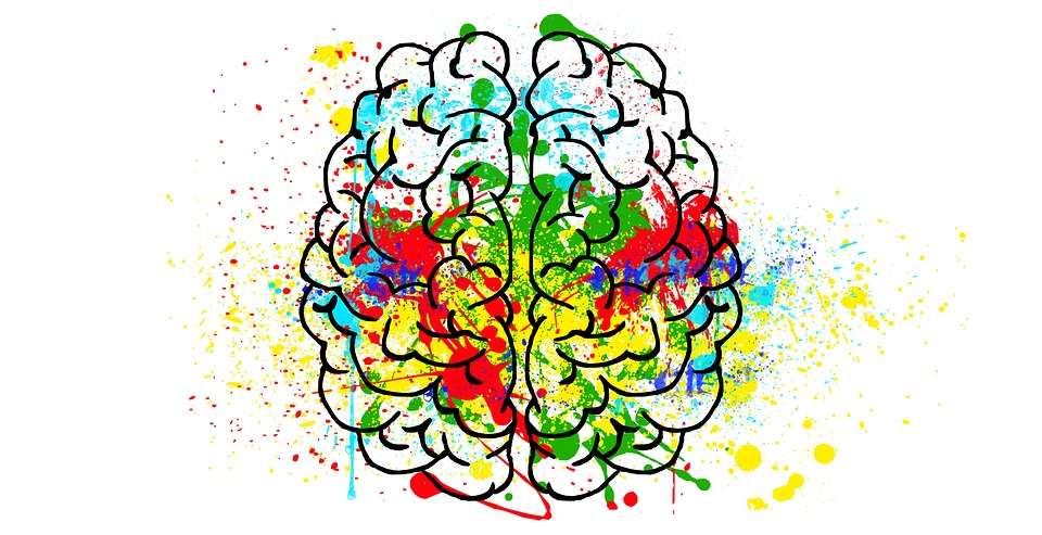 brain-2062048_960_720