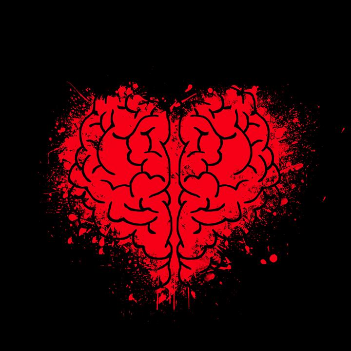 heart-2356621_960_720