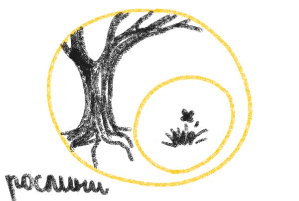 org_circle